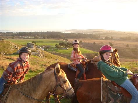 bay area s best places for horseback riding 171 cbs san francisco