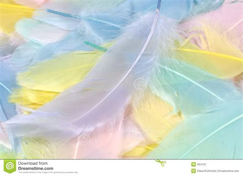 Was Sind Pastellfarben by Pastel Feathers 2 Stock Image Image Of Background Pastel