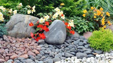 giardino roccioso progetto giardino roccioso