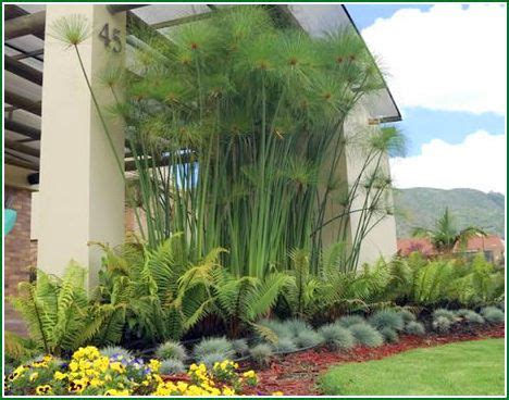 imagenes de jardines exteriores pequeños 1000 ideas about decoracion jardines peque 241 os on
