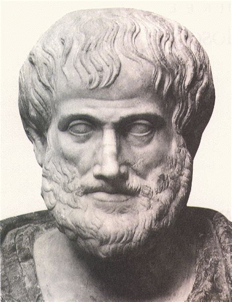 biography aristotle greek philosopher plato rhetoric quotes quotesgram