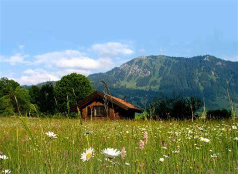 berghütte in den alpen mieten allg 228 u h 252 ttenurlaub in allg 228 u mieten alpen chalets