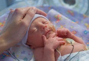 baby comfort nursing nicu palliative care recommendations nicu bereavement