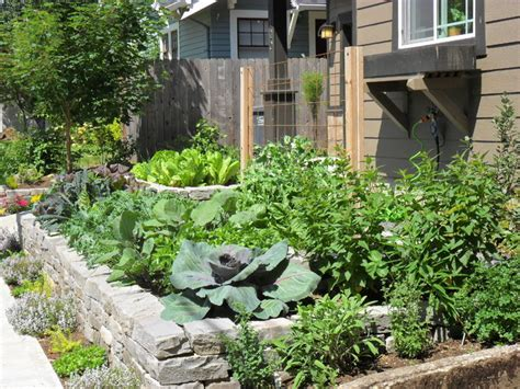 front yard edible garden craftsman landscape portland by plan it earth design
