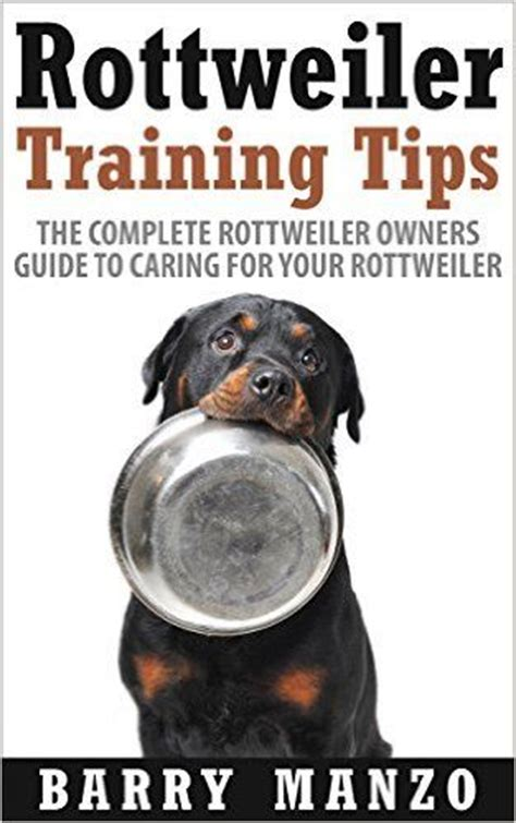 caring for rottweilers best 25 rottweiler ideas on