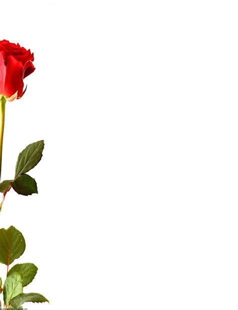 html imagenes borde bordes decorativos bordes decorativos con rosas