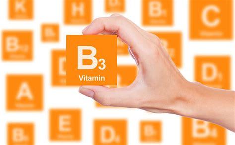 vitamina a in quali alimenti si trova vitamina b3 niacina o vitamina pp a cosa serve e in