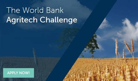 challenge bank paepard transforming agribusiness through innovation