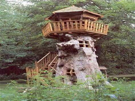 awesome tree house plans outdoor awesome treehouse plans and designs diy treehouse treehouse kits