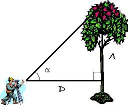 imagenes de razones matematicas unidad did 225 ctica razones trigonom 233 tricas