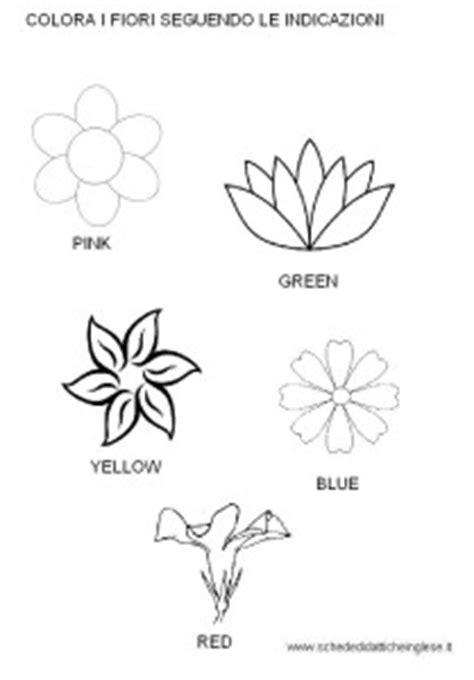 nomi di fiori in inglese fiori in inglese kwckranen
