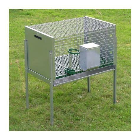 costruire gabbie per conigli conigliera per maschio ferranti di bonacci michele