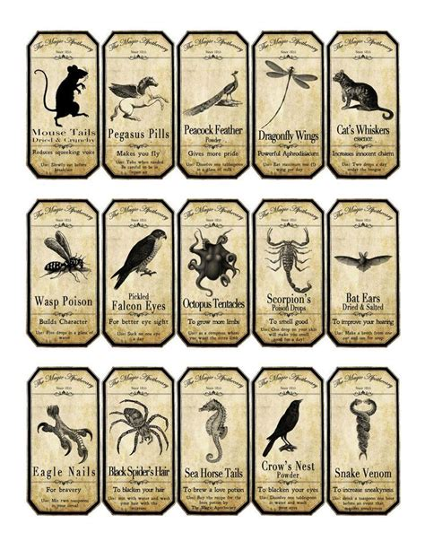 printable apothecary labels halloween magic apothecary animal label stickers set of 15