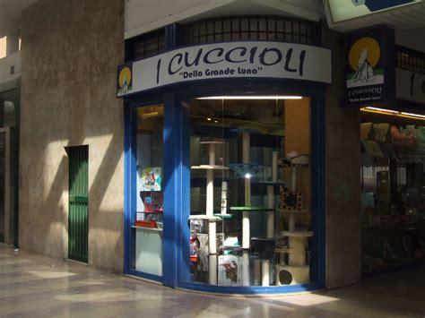 Showhome Designer Jobs Manchester by Negozi Vendita Animali Milano Negozi Di Animali Lombardia