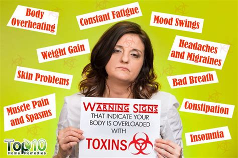 How To Detox Without Overloading Your With Toxins by Warning Signs That Indicate Your Is Overloaded With
