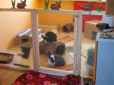 indoor garden for rabbits 17 best images about great rabbit home ideas on