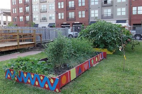 orto in terrazza come fare come fare un orto come fare un orto sul terrazzo