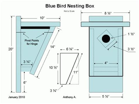 Eastern Bluebird House Plans Bluebird Nest Box Plans Bluebird House Plans