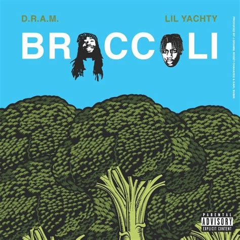 coloring book zip m4a d r a m broccoli feat lil yachty stereogum