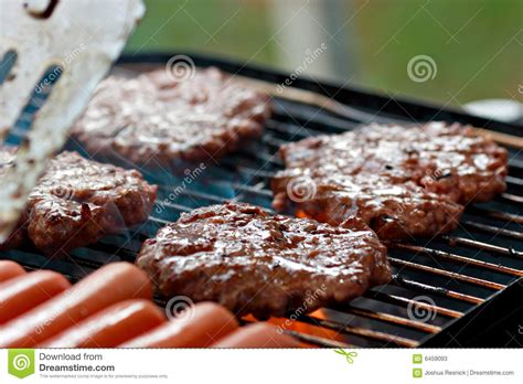 grilling dogs grilling burgers and dogs stock photos image 6459093