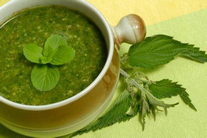 Delish Dish Detox by Detox Blender Recipes Green Drink Recipes Cleansing