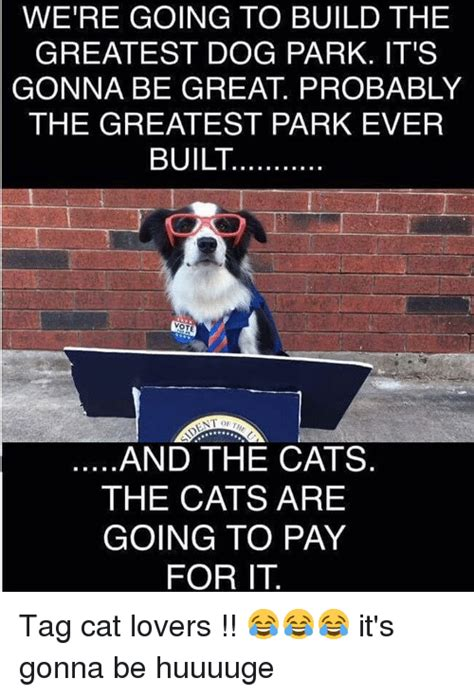 how to build a dog park in your backyard were going to build the greatest dog park it s gonna be