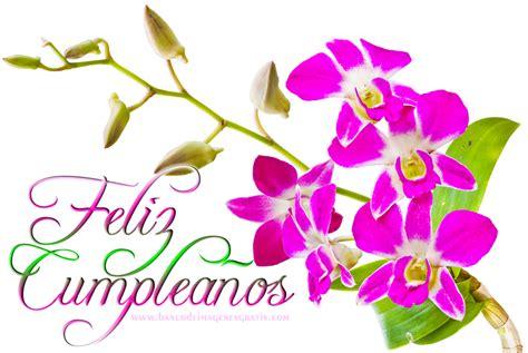 imagenes rosas feliz cumpleaños imagenes de feliz cumple anos sobrina