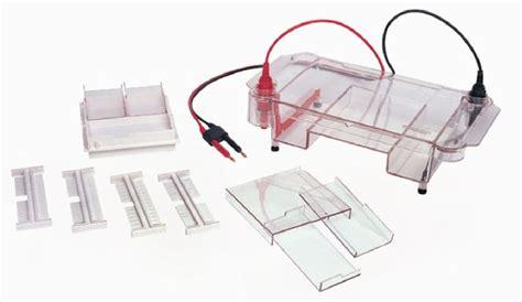 Gell Box midi gel box midi size horizontal gel box for dna rna