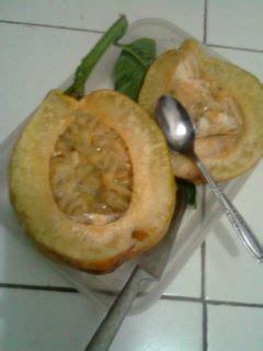 Jual Bibit Buah Markisa markisa jumbo buah buah impian