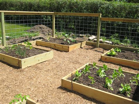 raised garden beds glasderbuilding raised bed gardening beautiful and organized
