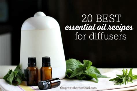 Diffuer Recipes For Detox by 22 Best Images About Doterra On Melaleuca