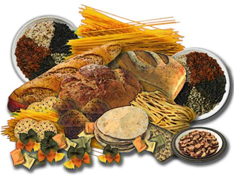 whole grains in food fitness and freebies positively dedicated to your fitness