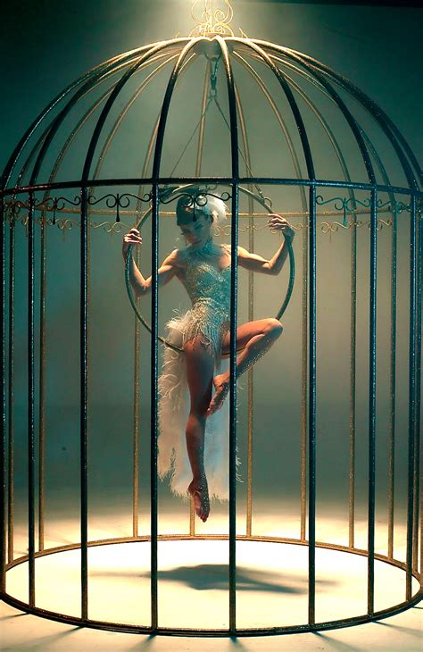 Bird In A Cage bird in cage for hire wow entertainers dubai