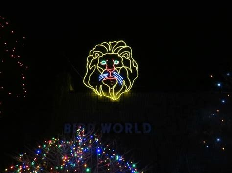 Denver Zoo Lights The Denver Zoo Picture Of Denver Zoo Zoo Lights Denver