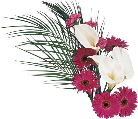 imagenes en png de flores fondo de flores en png imagui