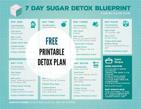 1 Week Detox Cleanse Diet Plan by Sugar Detox Plan A 7 Day Blueprint For Quitting Sugar