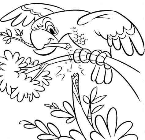 desenhos para colorir desenhos para colorir animais pagina 5 confira dicas de desenhos de animais para colorir e