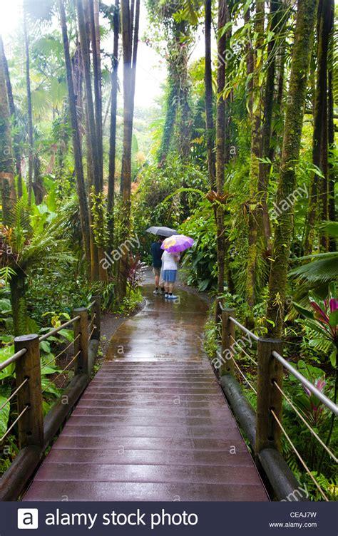 botanical gardens hilo