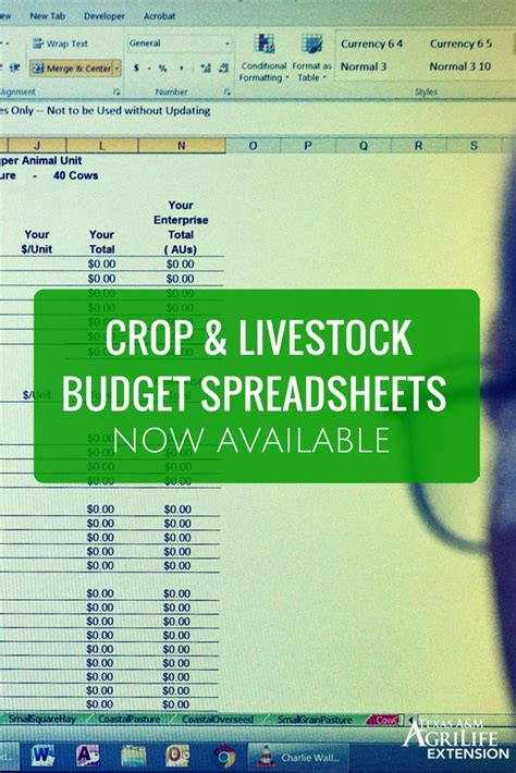 crop budget template 17 best images about a m agrilife extension on