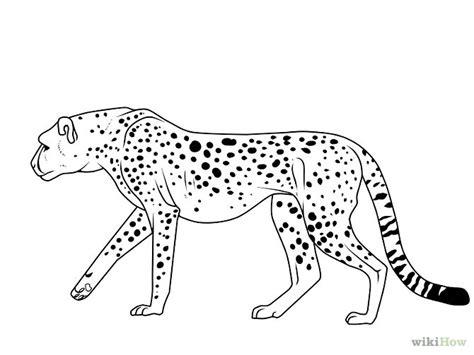 cheetah head coloring page cheetah line art stock illustration black mascot decals
