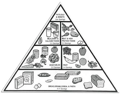 diagram of the food pyramid megan fox food pyramid pictures of food