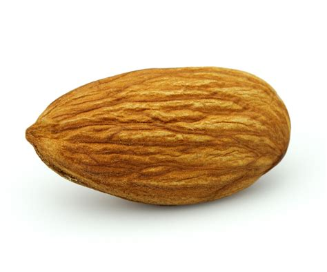 Almond Almond Activated Nuts Why And How Ecstasy