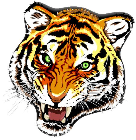 lion tattoo transparent png stickpng tiger colour transparent png stickpng