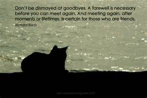 Something soothing for the soul pet loss journey pet loss journey