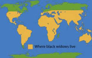 Where Do Jaguars Live In The World Range Of The Black Widow Spider Map Clipartsgram