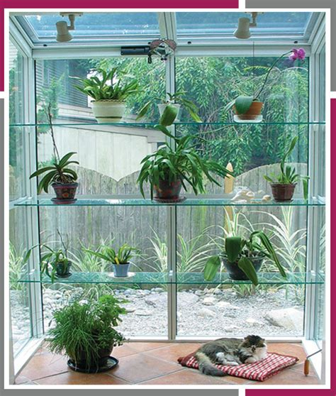 Backyard Window by Garden Windows Beautiful Garden Windows By Window World