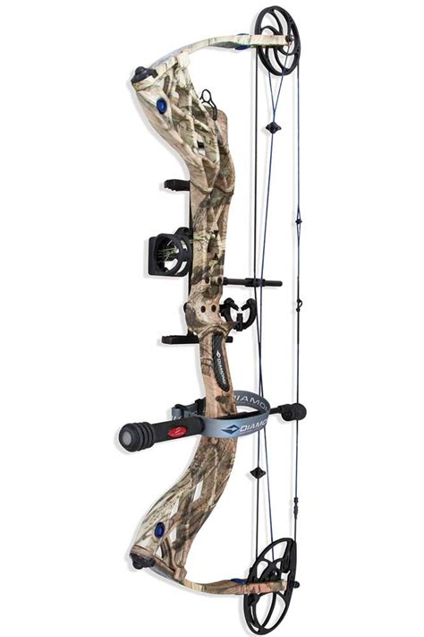 best compound bows best compound bow for the money compound bow reviews 2014