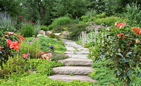 comment d 233 corer votre jardin maisongamboni fr