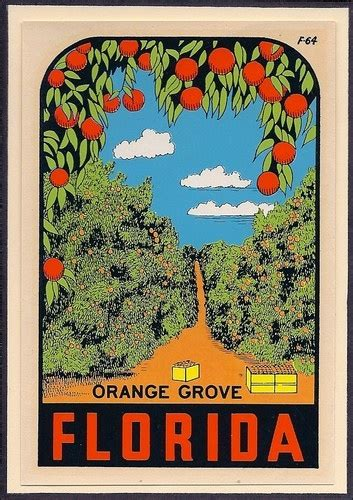 florida orange groves map pin by kristen on illustration