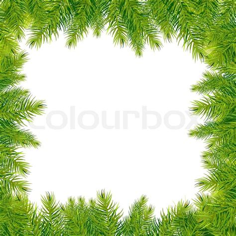 Twig Home Decor by Christmas Tree Branches Border Isolated On White